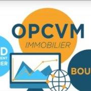 Qu'est-ce qu'un OPCVM Immobilier ?