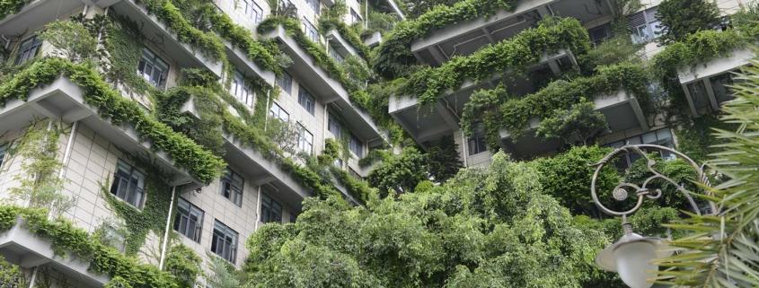 Kyaneos Pierre : le résidentiel « vert » fait recette