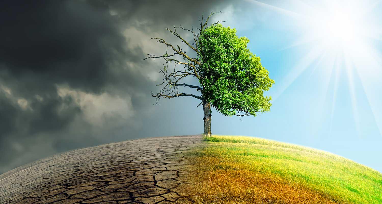 L'ESG est-il un mot, une tendance ou une hypocrisie ?